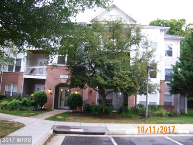 1509 Point Drive #203, Reston, VA 20194 (#FX10083339) :: Network Realty Group