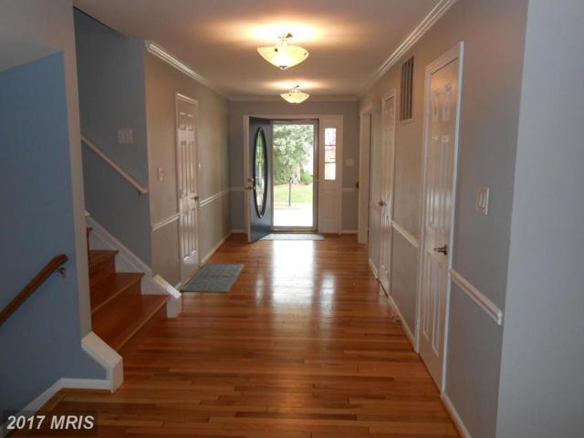 6029 Forest Run Drive, Clifton, VA 20124 (#FX10083604) :: The Belt Team