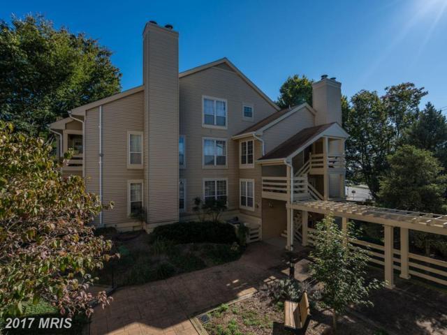 6601 Jupiter Hills Circle J, Alexandria, VA 22312 (#FX10083901) :: LoCoMusings
