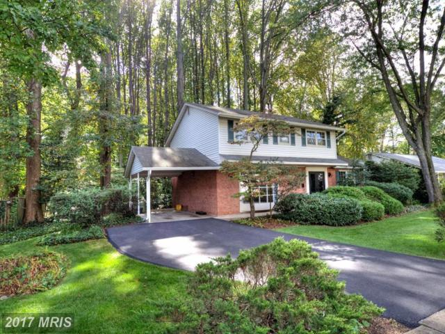 9807 Limoges Drive, Fairfax, VA 22032 (#FX10084116) :: RE/MAX Gateway