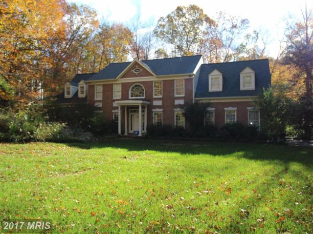 12020 Winding Creek Court, Clifton, VA 20124 (#FX10085028) :: Browning Homes Group