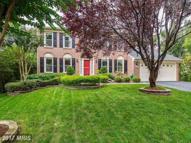 6340 Brocketts Crossing, Alexandria, VA 22315 (#FX10085099) :: MidAtlantic Real Estate
