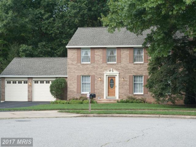 8216 Rushing Creek Drive, Springfield, VA 22153 (#FX10085150) :: Pearson Smith Realty