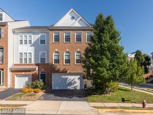 7851 Locust Leaf Lane, Alexandria, VA 22315 (#FX10085443) :: Network Realty Group