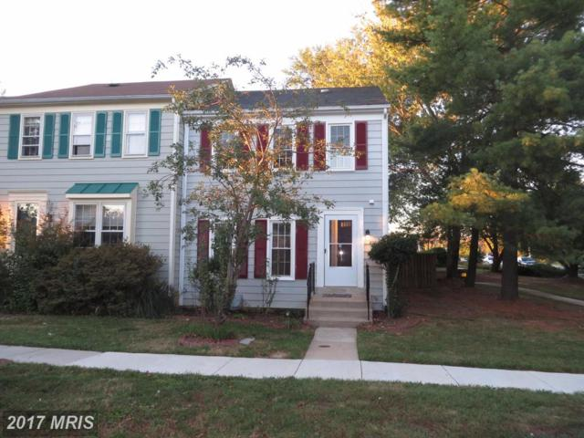 8061 Dulciana Court, Springfield, VA 22153 (#FX10085888) :: Browning Homes Group