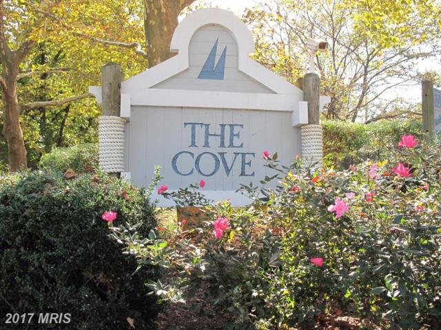 7596 Lakeside Village Drive N, Falls Church, VA 22042 (#FX10086387) :: The Tom Conner Team