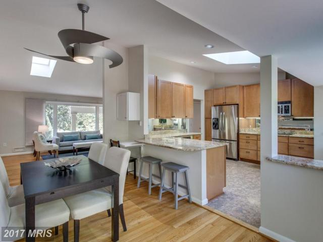 8704 Bradgate Road, Alexandria, VA 22308 (#FX10086516) :: Colgan Real Estate