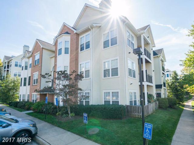 4139 Fountainside Lane F302, Fairfax, VA 22030 (#FX10087031) :: The Gus Anthony Team