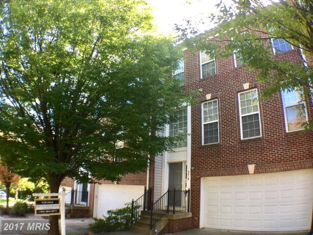 5519 Eyler Drive, Alexandria, VA 22315 (#FX10087134) :: Browning Homes Group
