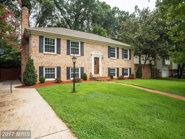 2004 Cool Spring Drive, Alexandria, VA 22308 (#FX10087597) :: Colgan Real Estate