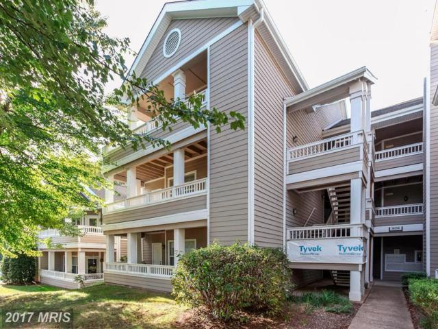 14314 Climbing Rose Way #203, Centreville, VA 20121 (#FX10087870) :: The Vashist Group