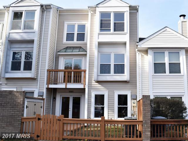 6068 Deer Hill Court, Centreville, VA 20121 (#FX10092888) :: Pearson Smith Realty