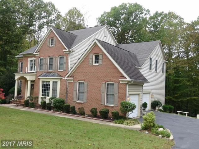 5736 Daingerfield Way, Fairfax Station, VA 22039 (#FX10093103) :: Pearson Smith Realty