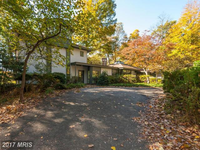 125 Commonage Drive, Great Falls, VA 22066 (#FX10093365) :: Pearson Smith Realty