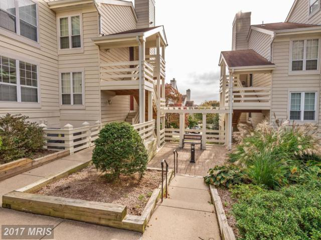 4505-H Hazeltine Court H, Alexandria, VA 22312 (#FX10093535) :: Pearson Smith Realty