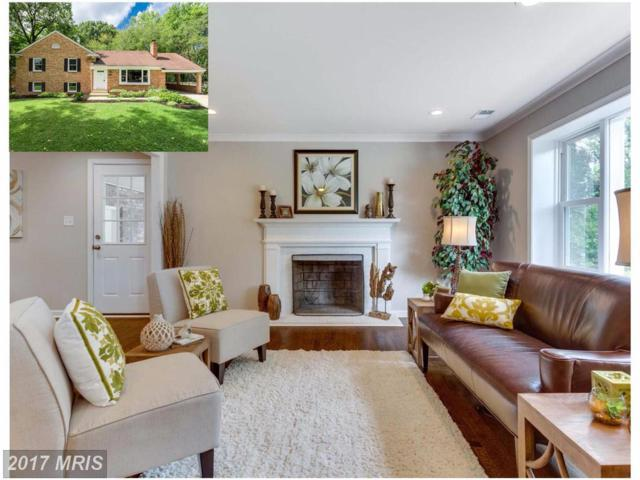 8532 Springman Street, Alexandria, VA 22309 (#FX10095831) :: Fine Nest Realty Group