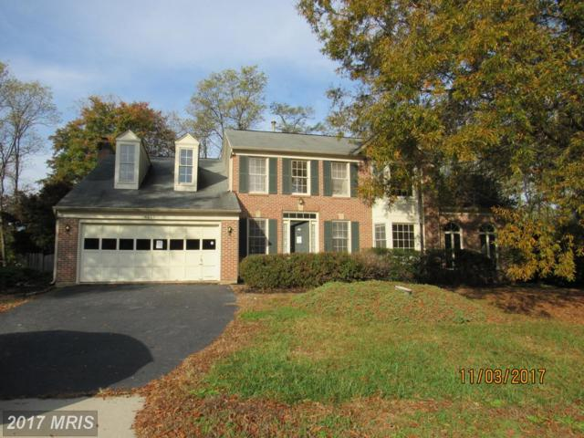 4606 Sutton Oaks Drive, Chantilly, VA 20151 (#FX10099703) :: Growing Home Real Estate