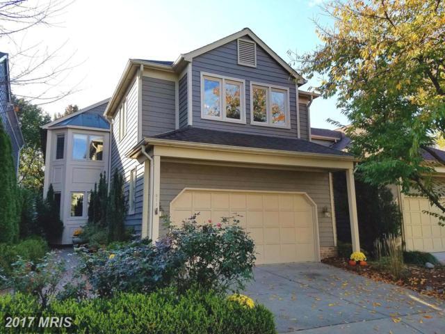 3119 Jerman Lane, Oakton, VA 22124 (#FX10100704) :: Growing Home Real Estate