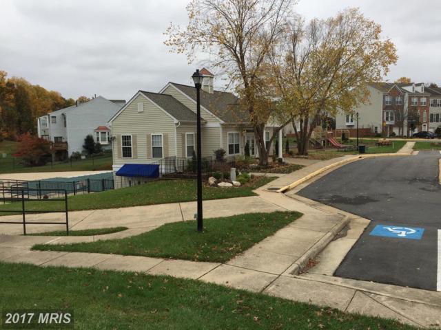 5301 Birds View Lane #11, Alexandria, VA 22312 (#FX10102476) :: LoCoMusings