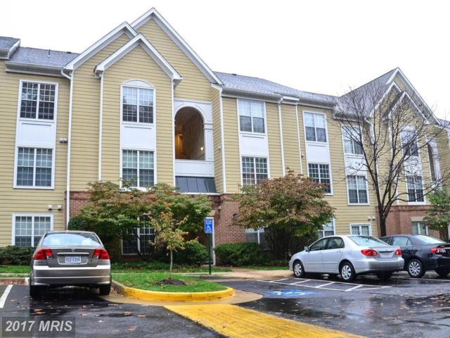 12903 Alton Square #203, Herndon, VA 20170 (#FX10102648) :: Circadian Realty Group
