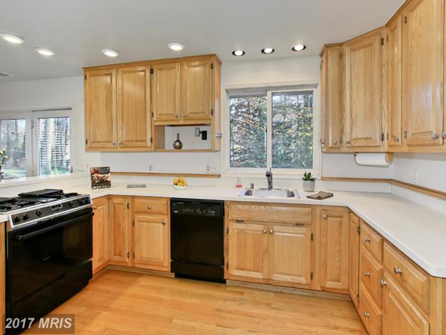 5615 Bellington Avenue, Springfield, VA 22151 (#FX10104233) :: Pearson Smith Realty