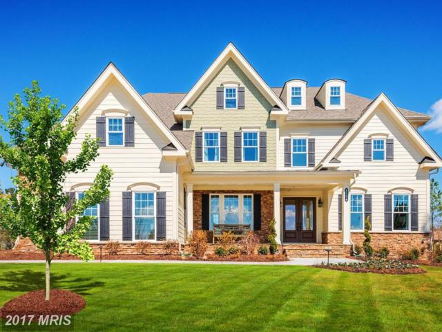 6820 Lilly Belle Court, Centreville, VA 20120 (#FX10105491) :: Pearson Smith Realty