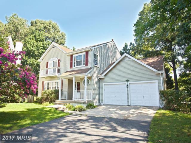 5223 Woodleaf Court, Centreville, VA 20120 (#FX10105873) :: Provident Real Estate