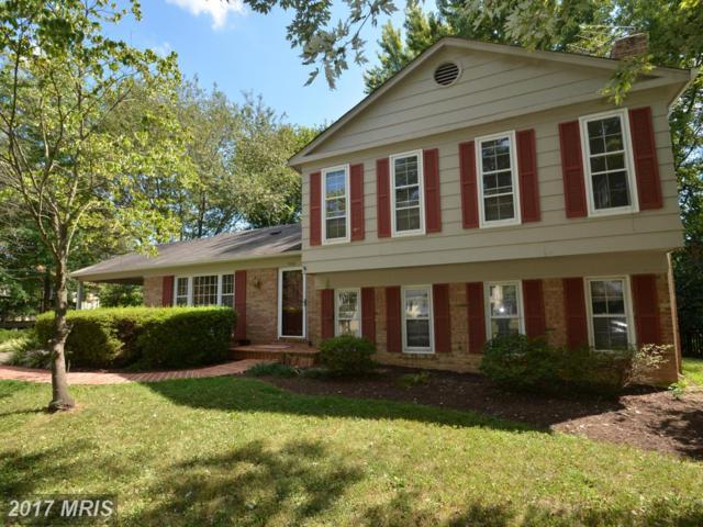 5461 Broadmoor Street, Alexandria, VA 22315 (#FX10105970) :: Growing Home Real Estate