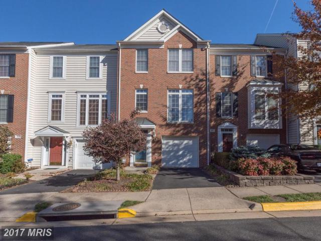 4129 Fairfax Center Creek Drive, Fairfax, VA 22030 (#FX10106456) :: The Putnam Group