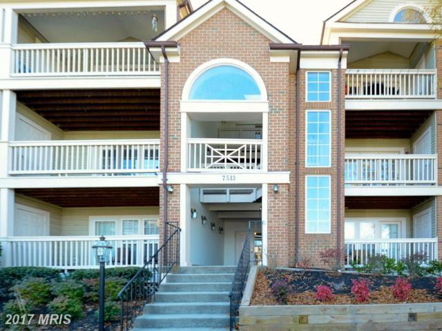 7513 Ashby Lane G, Alexandria, VA 22315 (#FX10106597) :: Arlington Realty, Inc.