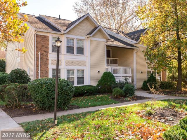 3424 Lakeside View Drive 10-3, Falls Church, VA 22041 (#FX10106668) :: Arlington Realty, Inc.