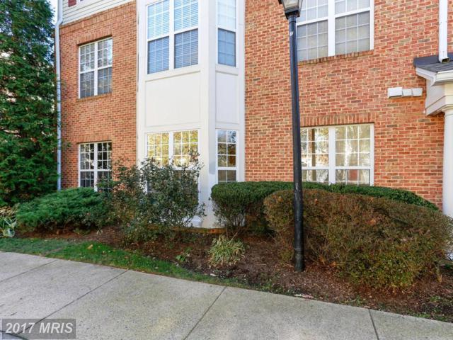 6495 Tayack Place #101, Alexandria, VA 22312 (#FX10106906) :: The Putnam Group