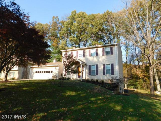 4277 Country Squire Lane, Fairfax, VA 22032 (#FX10107556) :: Mosaic Realty Group