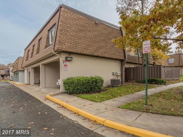 3811 Needles Place E, Alexandria, VA 22309 (#FX10108445) :: Labrador Real Estate Team