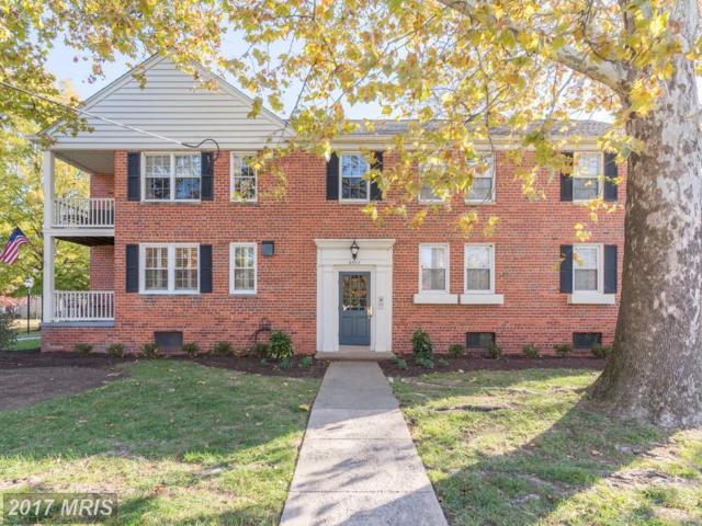 6507 Potomac Avenue A1, Alexandria, VA 22307 (#FX10108514) :: Labrador Real Estate Team