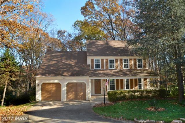 6819 Bluecurl Circle, Springfield, VA 22152 (#FX10108540) :: Pearson Smith Realty