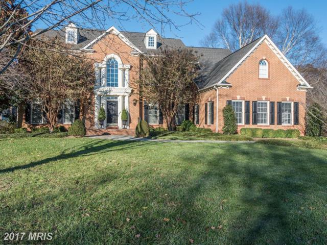 10892 Treeview Court, Great Falls, VA 22066 (#FX10108772) :: The Belt Team