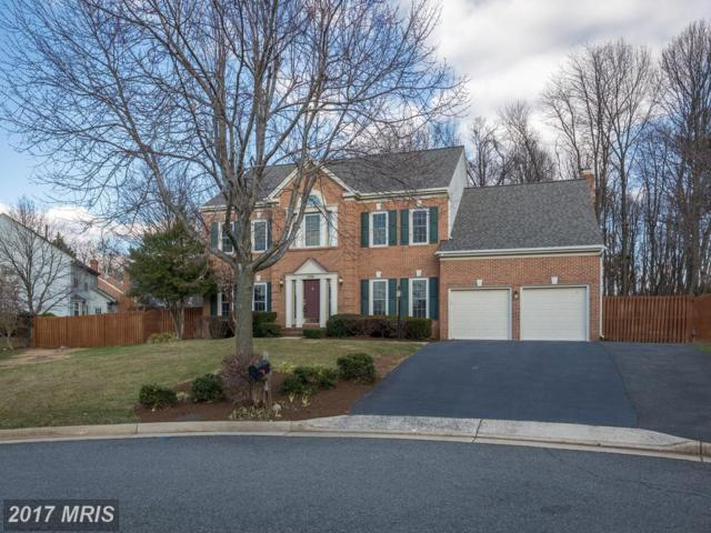 13896 Old Nursery Court, Chantilly, VA 20151 (#FX10111799) :: Circadian Realty Group