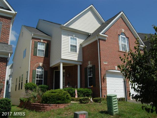 8182 Usher Drive, Lorton, VA 22079 (#FX10117694) :: Tom & Cindy and Associates