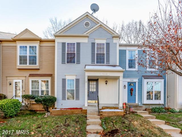 7248 Stover Drive, Alexandria, VA 22306 (#FX10118946) :: The Tom Conner Team