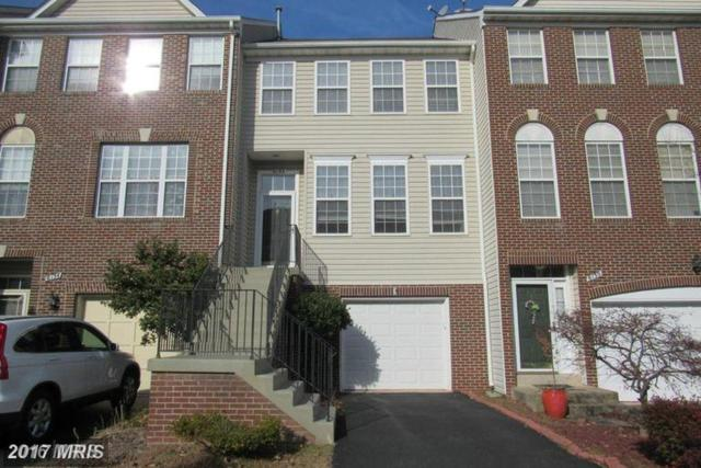 6132 Early Autumn Drive, Centreville, VA 20120 (#FX10119370) :: Jacobs & Co. Real Estate