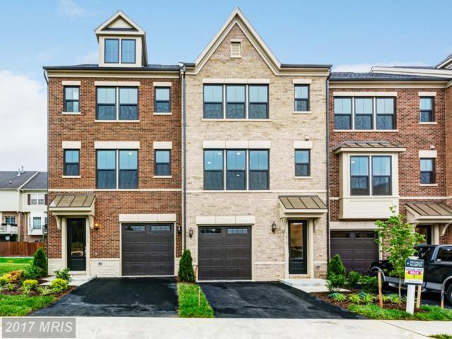 3679 Ambrose Hills Road, Falls Church, VA 22041 (#FX10119472) :: Network Realty Group