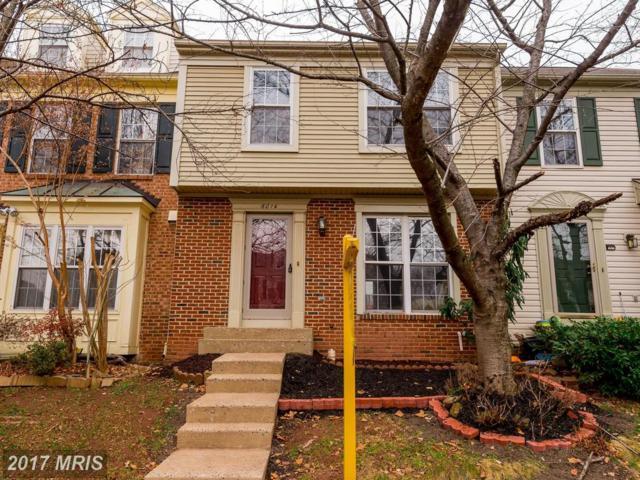 6014 Raina Drive, Centreville, VA 20120 (#FX10119603) :: Arlington Realty, Inc.