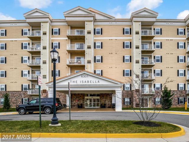 6301 Edsall Road #516, Alexandria, VA 22312 (#FX10120155) :: Pearson Smith Realty