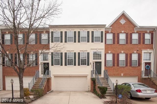6659 Scottswood Street, Alexandria, VA 22315 (#FX10120320) :: Arlington Realty, Inc.