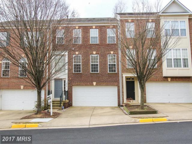 5519 Eyler Drive, Alexandria, VA 22315 (#FX10121283) :: Pearson Smith Realty
