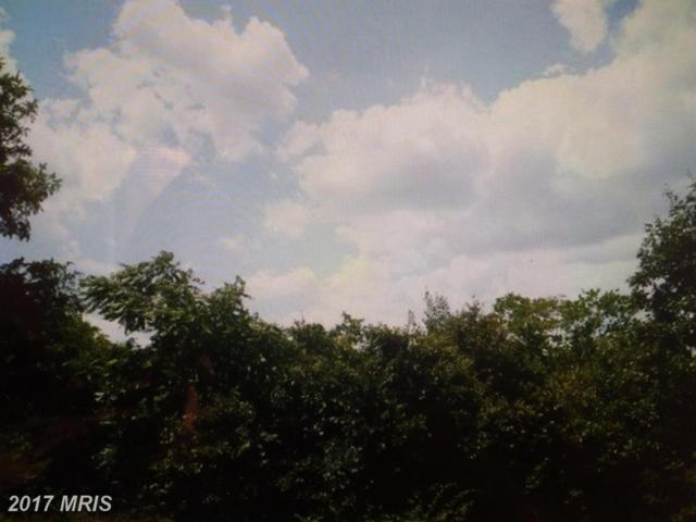 13507 Compton Road, Clifton, VA 20124 (#FX10121670) :: Browning Homes Group