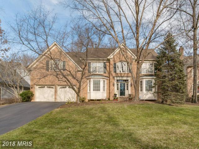 12712 Pond Crest Lane, Herndon, VA 20171 (#FX10123496) :: Circadian Realty Group