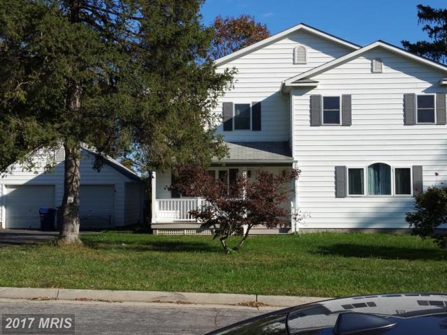 6364 Landess Street, Alexandria, VA 22312 (#FX10125533) :: Pearson Smith Realty