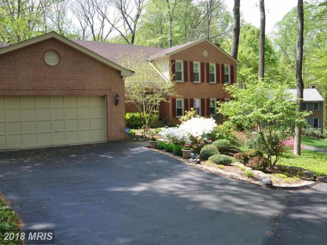 6023 Makely Drive, Fairfax Station, VA 22039 (#FX10125617) :: Browning Homes Group
